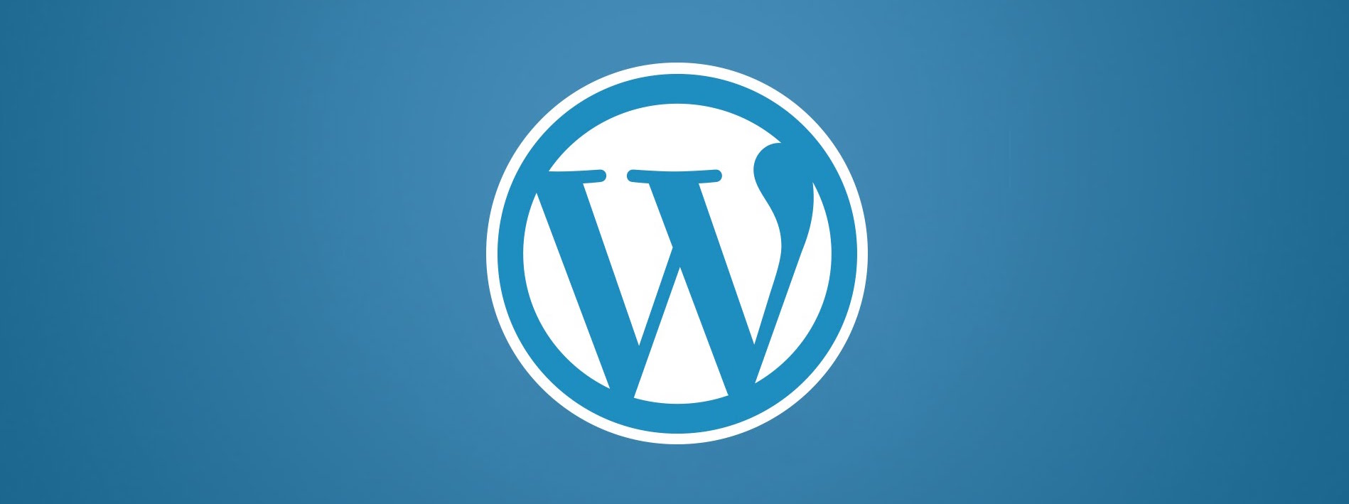 Wordpress cybersecurity